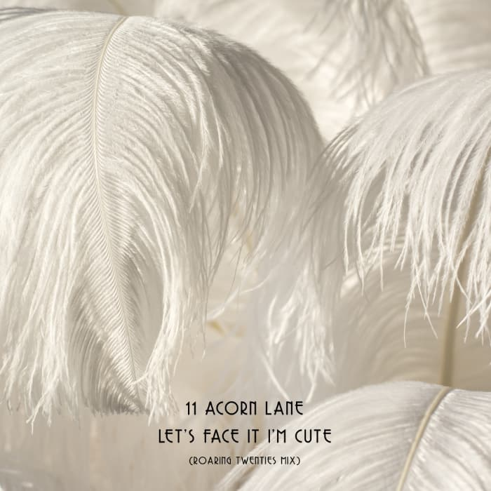 11 Acorn Lane - Let's Face It (Roaring Twenties Mix)