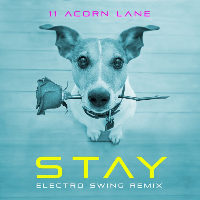 11 Acorn Lane - Stay (Electro Swing Remix)
