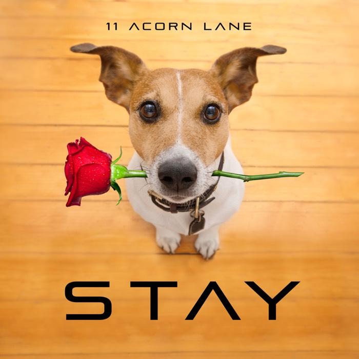 11 Acorn Lane - Stay